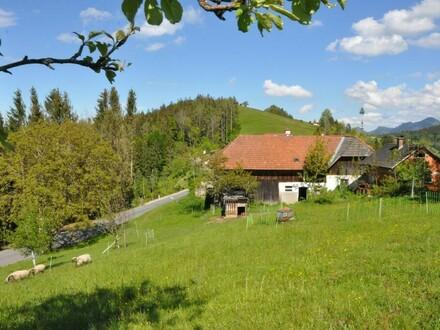 Sacherl mit 4000 m² Grund im Dorfgebiet Oberschlierbach - bebau- und bewirtschaftbarer Lebensraum für Mensch & Tier!