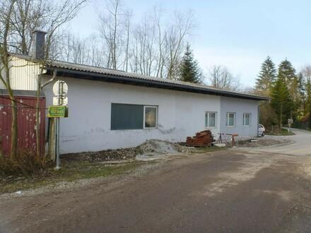 Halle mit ca. 130m² im Betriebsbaugebiet Nähe Bad Hall zu vermieten