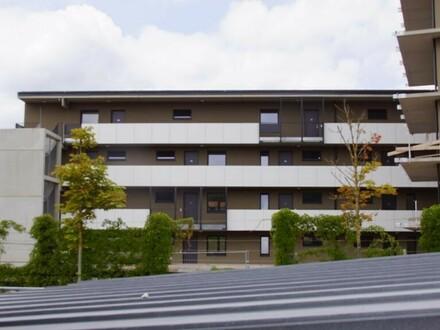neuwertige 55 m² - Mietwohnung auf der Ennsleite