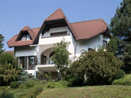 Stadtvilla mit Aussichtslage in Steyrdorf