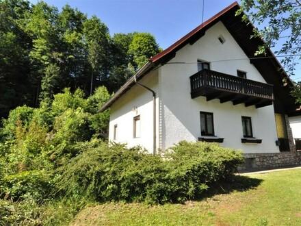 Einfamilienhaus mit 2.060 m² Grund - viel Lebensraum zur individuellen Gestaltung - Reichraming