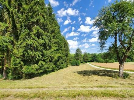 Freizeitgrund - Landwirtschaftliche Nutzfläche mit Wald
