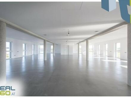 Büroflächen in Neubau in Haag zu vermieten!