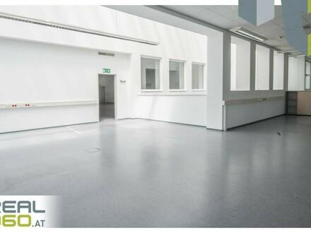 Helle Büroflächen in Linz zu vermieten!!