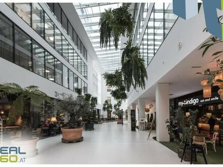 Im Herzen von Linz - DIE Geschäftsfläche in den neuen Promenaden-Galerien zu mieten!!