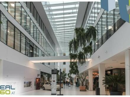 """PROMENADEN-GALERIEN - """"Die Geschäftsfläche"""" im Herzen von Linz zu vermieten!"""