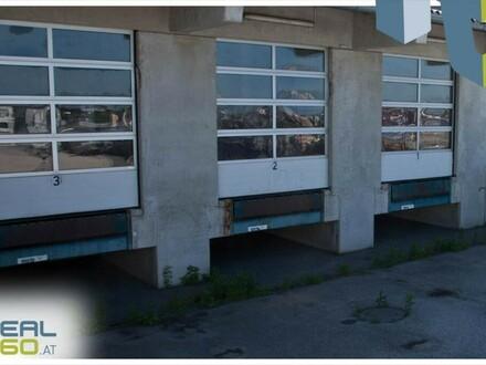 Top Lagerflächen angrenzend an die Wiener Bundesstraße ab sofort zu vermieten!