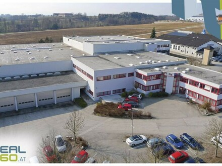 Tolle Lagerhallen in Thalheim bei Wels zu vermieten - TEILBAR!
