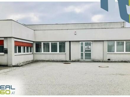Tolle Lagerhalle mit Büro und Freifläche in St. Florian zu vermieten!