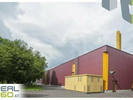 Perfekte Gewerbelage - Ca. 2.000m² Lagerflächen neu zu vermieten!! Erweiterbar auf ca. 16.500m²!