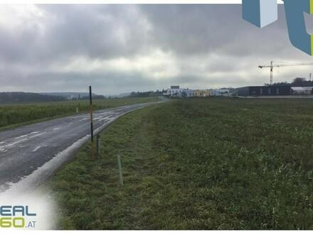 Toller Betriebsbaugrund nahe der Autobahn Haag zu verkaufen!