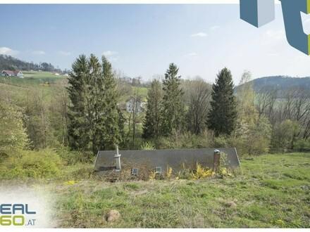 15 min. nach Linz - Hanggrundstück mit netter Holzhütte in der Koglerau!
