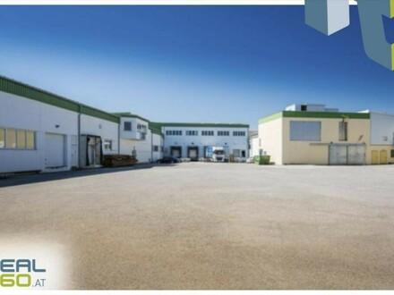 Büro- und Lagerflächen im MOSTVIERTEL ab sofort zu vermieten!