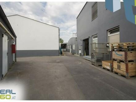 Lagerfläche mit Flugdach nahe Infra-Center in Linz-Süd zu vermieten!