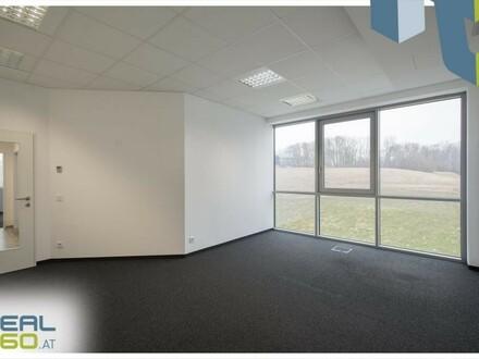 Moderne Büroflächen zu vermieten - Pasching!