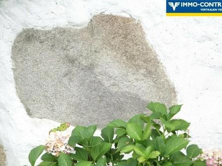 einzigartiges, mühlviertler Landhaus in Ruhelage