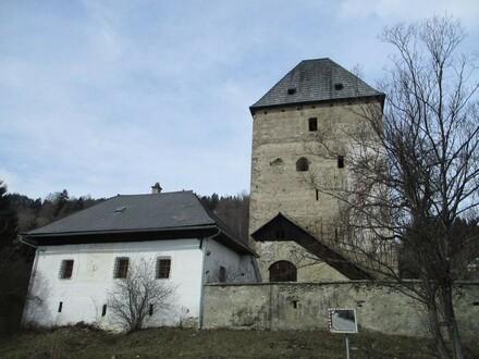 Hegerhaus mit Zehentturm Baierdorf