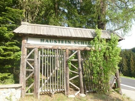 Verwunschene Villa in der Waldheimat
