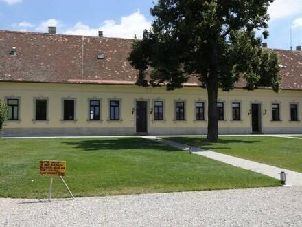 """""""Büro im Forsthof!"""""""