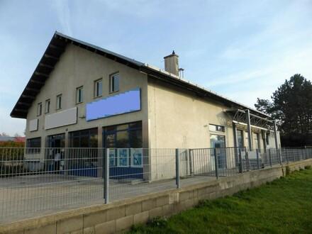 """""""Wohnen & Arbeiten - 170m² + 45m² Terrassenwohnung + 650m² Büro, Lager, Werkstatt!"""""""