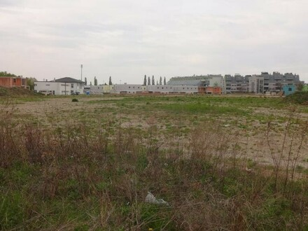 """Stadt trifft Land in Leopldsdorf"""