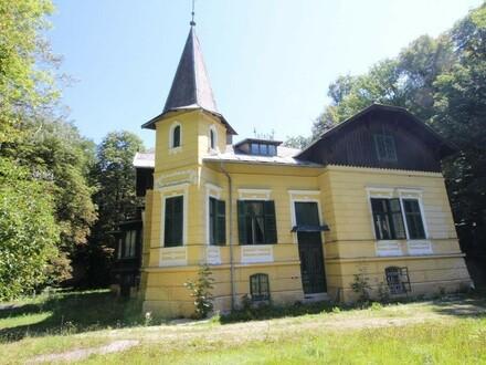 """""""Alte Villa für Bauträger!"""""""