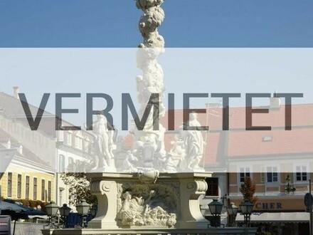 """""""Renovierter Altbau!"""""""