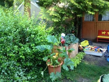 """""""3 Zimmer und 60 m² Garten!"""""""