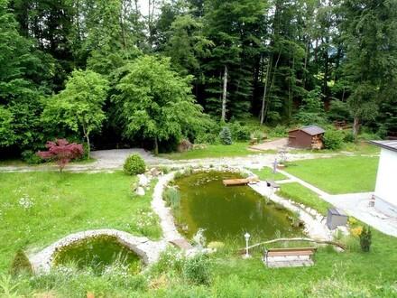 Grundstück bzw. Garten mit ca. 1.617 m² inkl. Schwimmteich!