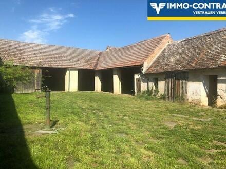 Omas Bauernhaus original erhalten - Nähe Gars
