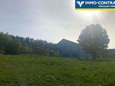 Traumhaft große Werkstatt mit Wohnung und Garten- 20 Min. von Horn