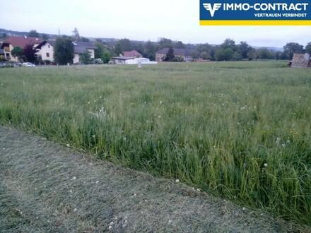 Siedlungsrandlage ca. 10min zu Fuß ins Zentrum von Seitenstetten