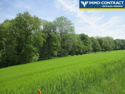 Diverse bewirtschaftete Wiesen- Acker- und Waldflächen