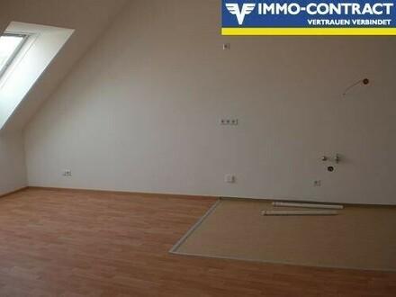 offene Küche mit Wohn-/Esszimmer