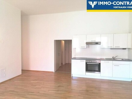 Stilvolles Studio-Apartment direkt im Kremser Stadtzentrum!