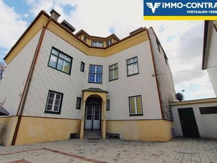Achtung Anleger! Stadtvilla mit 5 Wohneinheiten