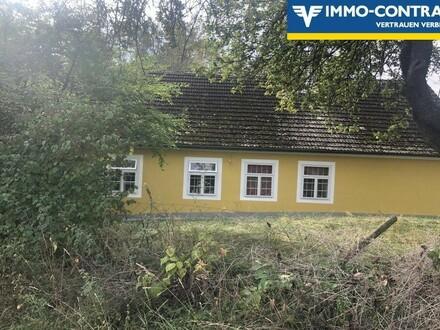 Haus in Einzellage Nähe Horn!