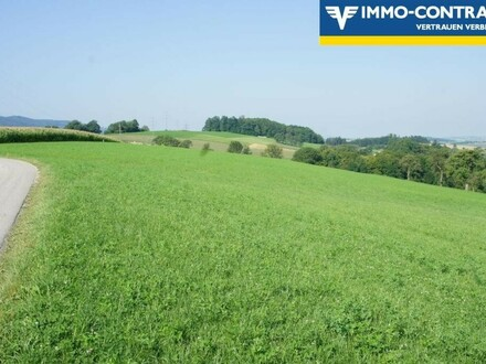 Kleinlandwirtschaft - Chance für Betriebsgründung