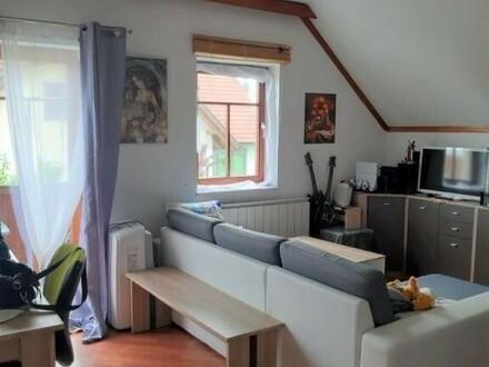 ÖKO - Dorf - Mietwohnung 50 m² am Stadtrand