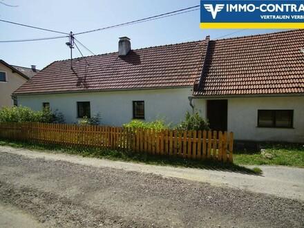 Bauernhaus im Ortsverband mit Grünland, Tierhaltung möglich