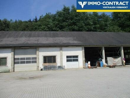 Lager- bzw. Produktionshalle mit Freifläche!