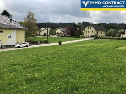 Baugrundstücke in Südhanglage!