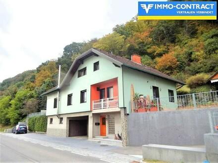 Wohnhaus mit Donaublick! Besitzt Hochwasserschutz!