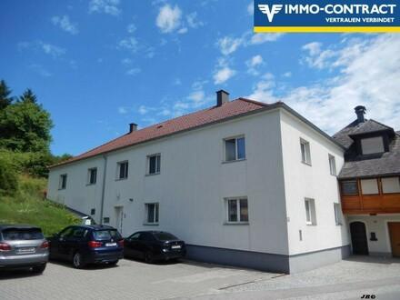 Mietwohnhaus - 3 Einheiten - Anlageobjekt