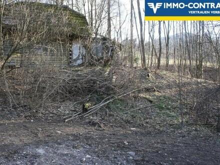 """""""Bauernsacherl"""" in Einzellage - erhaltenswürdiges Gebäude im Grünland"""