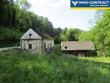 Wo sich Fuchs und Hase gute Nacht sagen: Traumhaftes Grundstück mit kleinem, nicht bewohnbaren Häuschen in Alleinlage!