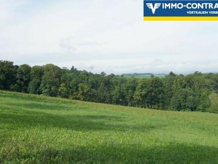 Ca. 7ha landwirtschaftliche Grundfläche - Äcker und Wiesen in Kirnberg
