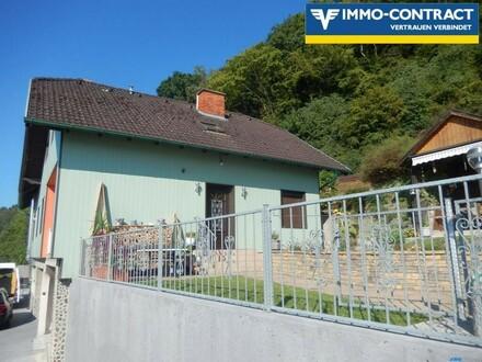 Mietwohnhaus mit Donaublick! Besitzt Hochwasserschutz!