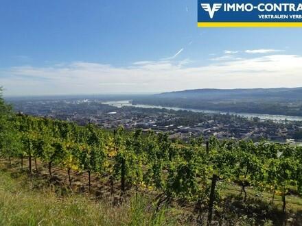 Freizeitgrund, Weingarten, Wiese