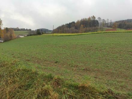 Aussichtslage Lichtenberg - sonniger Baugrund